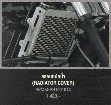 RADIATOR COVER (ラジエターカバー)